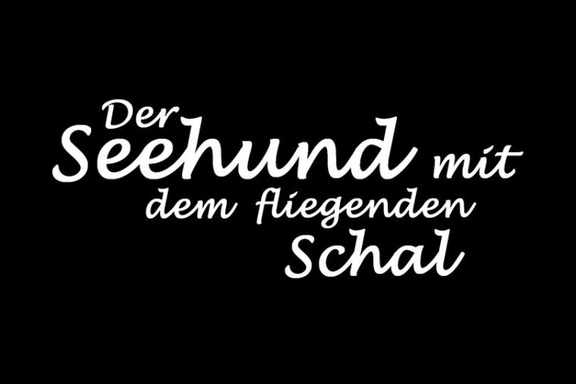 smdfs-seehund-media