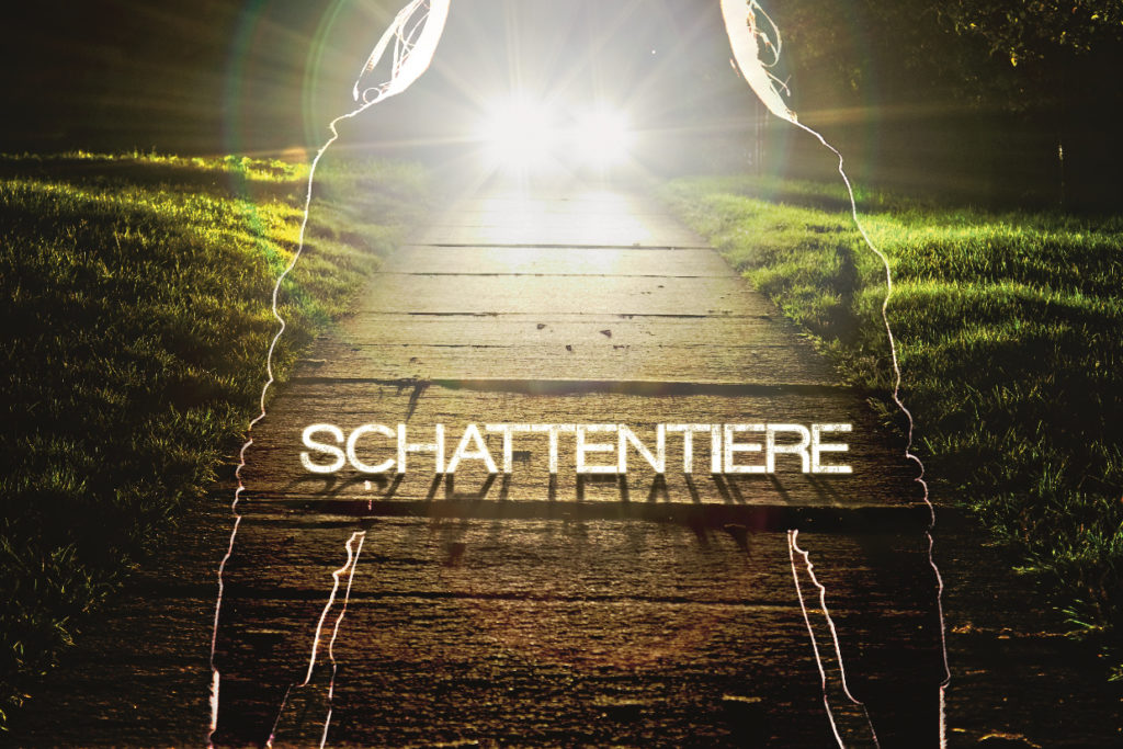 Schattentiere-trailer-seehund-media