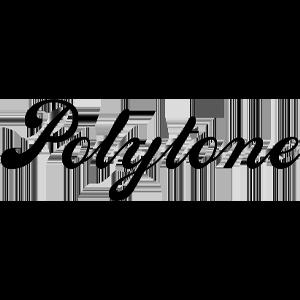 Logo vom Unternehmen Polytone