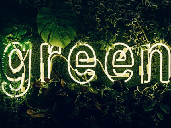 gruene-pflanzen-im-dunkeln-mit-leuchtreklame-green
